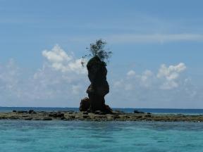 Futuna 1426