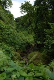 Futuna 286