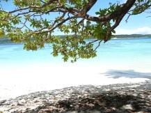 Futuna 523